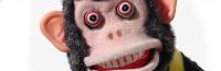 Monkey Serum