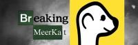 Breaking Meerkat
