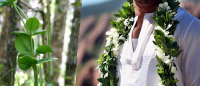 My Big Fat Hawaiian Wedding