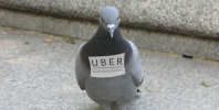 Apple and The Uber Pigeon