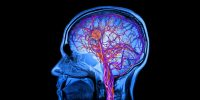 Hacking your vapourware brain