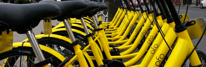 Ofo – Good idea, bad experience