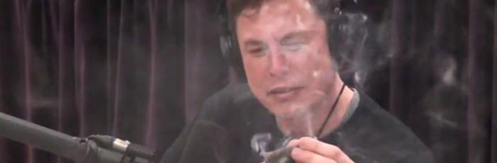 Elon Is At It Again…