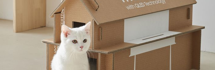 Building Cat Houses