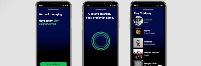 Hey Spotify!